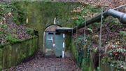 Großes Waldgrundstück mit zwei Bunkern
