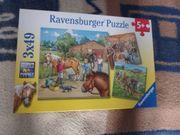 Ravensburger Puzzle 5 Mein Reiterhof