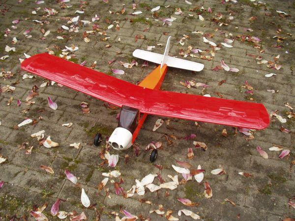 Elektroflugmodell Bingo