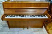Young Chang Mod 107 Klavier
