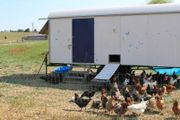 suche Mobilen Stall Hühner