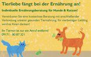 Ernährungsberatung für Hunde Katzen