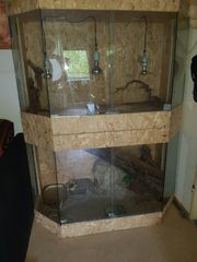 Terrarium mit kompletter Einrichtung