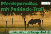 Pferdeparadies mit Paddock-Trail hat Plätze