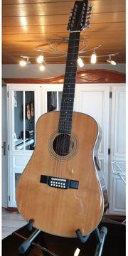 Washburn 12 Saiten Akustik Gitarre