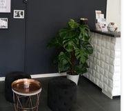 Kosmetikstudio Laden Mannheim