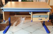 Moll Schreibtisch