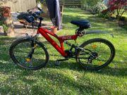 Gebrauchtes Mountainbike mit exklusiver Coca