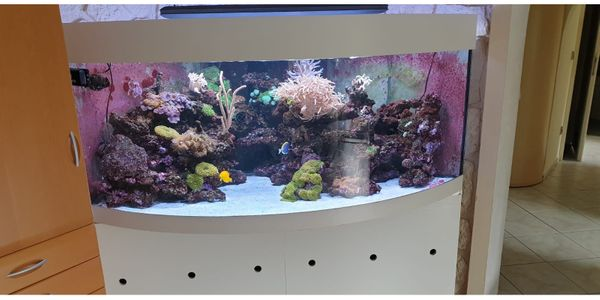 Meerwasseraquarium 800L