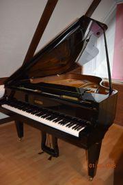 Flügel Schimmel-Pleyel Mod 174 Schwarz
