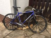 Giant TCR Compact Road Mike