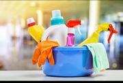 Haushaltshilfe Reinigungskraft Putzfrau