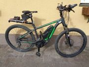 Elektrisches Mountainbike