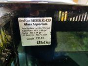 Verkaufe Ref Sea Reefer 425xl