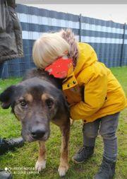 Kinderlieber Hunde-Opi Hope aus dem