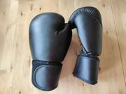 NEU Boxhandschuhe 12 oz unbenutzt