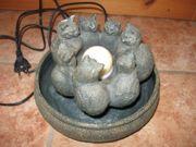 Zimmer Wasser Brunnen Katzen
