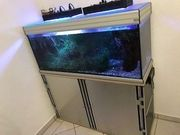 Aquarium mit Filter u stabilem