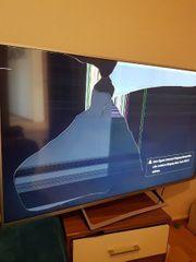 Defekter Bildschirm Sony Bravia 55