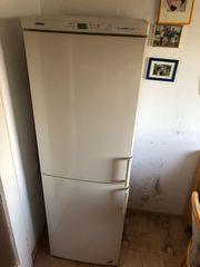 Hoher Kühlschrank mit Gefrierscharnk