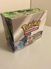 Pokémon PLATIN ARCEUS Display offen