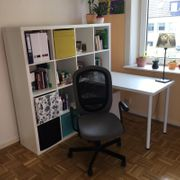 Ikea Regal und Schreibtisch