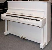 Klavier Hyundai U 835 weiß