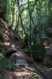 Romantisches Naturschutzgebiet