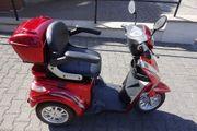 Elektromobil Dreiradroller Eco Engel 501