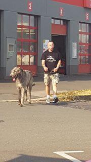 Haushaltshilfe inkl Dogsitter