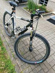 Nishiki 29 Toll Fahrrad