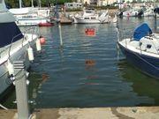 Segelschiff- Motorboot Liegeplatz an der