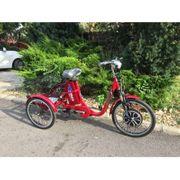 Telesto E-tricycle bike 36V 12Ah