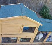 Kaninchen Schlappohr mit Stall Zubehör