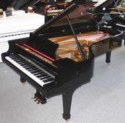 Flügel Klavier Steinway Sons D-274