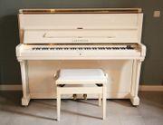 C Bechstein Klavier Modell 12