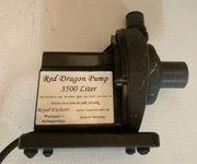 Royal Exclusiv Mini Red Dragon