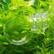 Aquarienvasen mit Saugnäpfen zu verkaufen