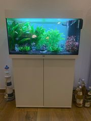 neuwertiges Juwel Aquarium inkl Unterschrank