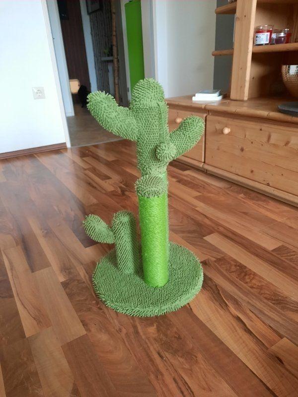 Katzenspielzeug Kaktus, unbenutzt