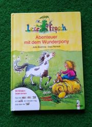 Kinderbuch - Abenteuer mit dem Wunderpony -