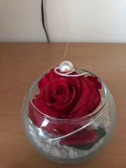 Dekorose rote Rose in Glas