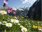 Last-Minute Wander- und Bergwoche Arlberg