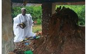 Partnerrückführung 100 Afrikanischen Voodoo Liebeszauber