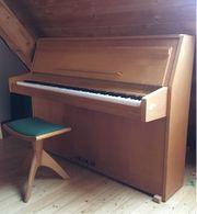 Klavier der Marke Rippen