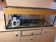 Wels oder Aufzucht-Aquarium mit Juwel