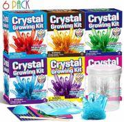 6xKristalle Züchten Experimentierset Kinder Chemie