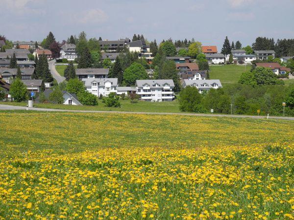 4-Zi ETW Hochschwarzwald - PRIVAT