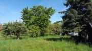 Ruhiges und grünes Baugrundstück mit