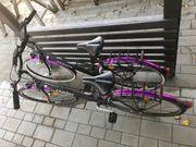 Zwei identische Fahrräder für Geschwister